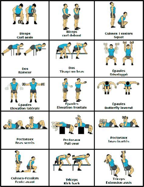 musculation avec halt 232 res exercices et programme