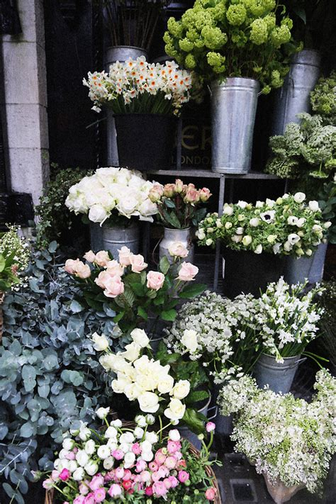 outdoor flower market pictures   images