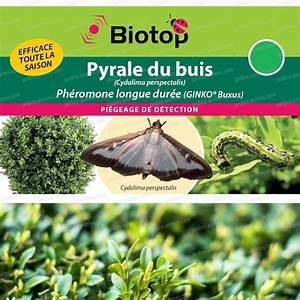 Pyrale Du Buis Traitement Bayer : ph romone pyrale du buis longue duree 2 capsules ~ Dailycaller-alerts.com Idées de Décoration
