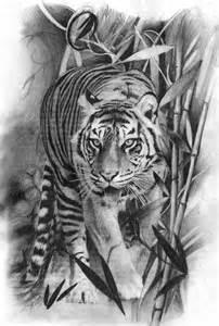 Realistic Tiger Tattoo Drawings