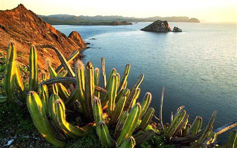 mexico landscape  vistas pinterest landscaping