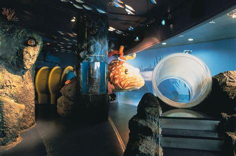 aquarium de barcelone tarif aqu 224 rium de barcelona cing bungalow globo rojo barcelona