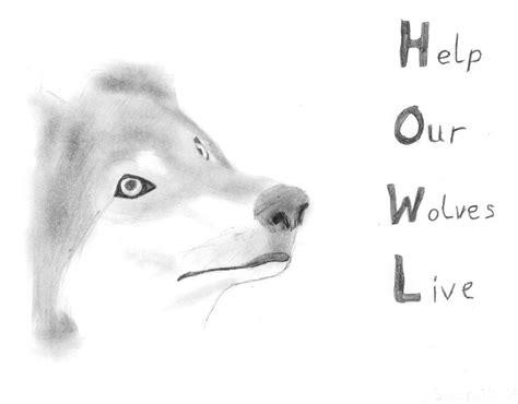 howl wolf pencil drawing  phantomwolf