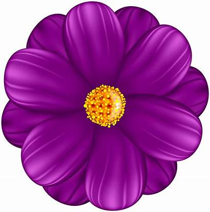 Purple Flower Clipart Decorative Flowers Transparent Yopriceville