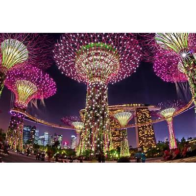 Singapore's Mid - Autumn Festival 2017 [Mooncake