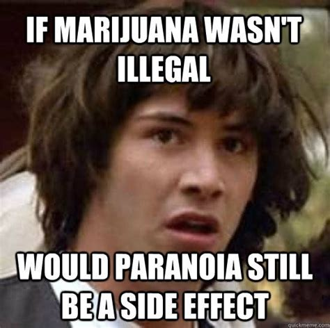Funny Weed Memes - 17 best images about weed memes on pinterest dab dab smoking weed and ganja