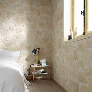 Castorama Deco Murale : plaquette de parement mur mur castorama 26 40 pierres pinterest plaquette de parement ~ Teatrodelosmanantiales.com Idées de Décoration