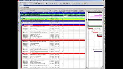 primavera p gantt chart bars  user defined fields