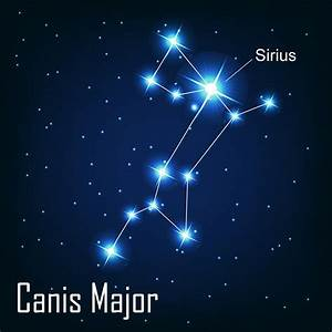 15 Starry Facts About the Sirius Star You Definitely Didn ...