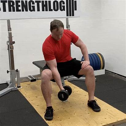Concentration Curl Dumbbell Elbow Lean Instructions