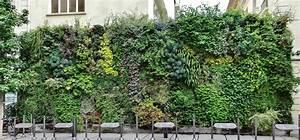 Mur Vegetal Exterieur : les murs v g talis s des champs elys es jardins de babylone ~ Melissatoandfro.com Idées de Décoration