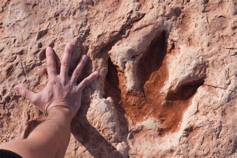 visit  moenkopi dinosaur tracks  tuba city arizona