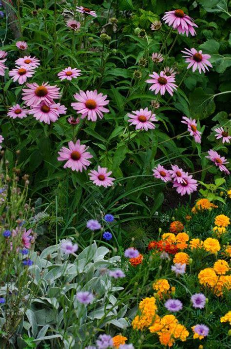 Fotos Garten