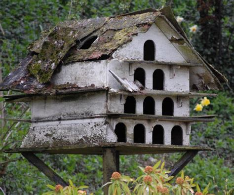 the benefits of bird houses the gardening cook