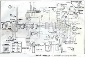 1985 Harley Davidson Wiring Diagram 3418 Cnarmenio Es