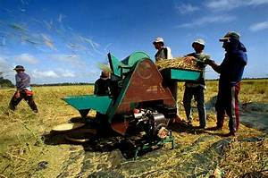 Machine Threshing
