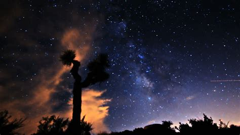 Epic Milky Way Passes Over Dinosaur Statue Silhouette