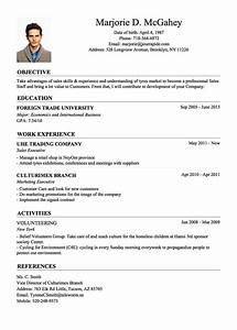 Professional resume cv templates with examples topcvme for Who can make a resume for me