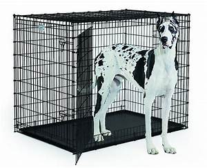 xxl dog crate for large dogs extra tall double doors With best dog kennels for large dogs