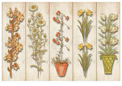 printable bookmarks  plants  flowers template