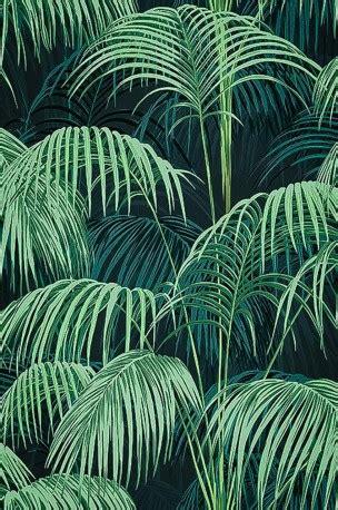 superb jungle wallpaper deep colors wallpaper roll