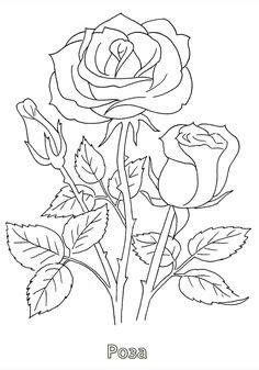 Rose Drawing Single Flower Outline Tattoo Stencil | show