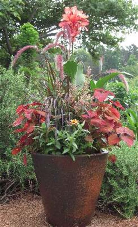 Learn How To Create An Exciting, Attractive Container