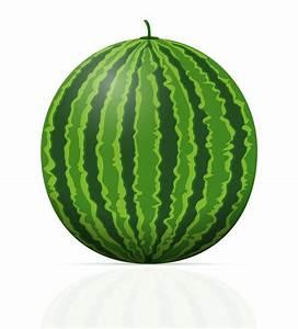 Watermelon, Ripe, Juicy, Vector, Illustration, 492540, Vector
