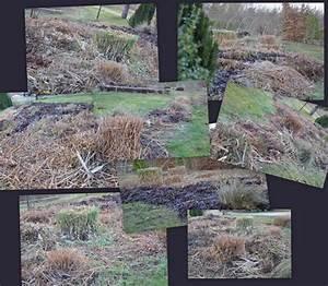 Broyeur De Jardin : broyeur de jardin yeepa ~ Nature-et-papiers.com Idées de Décoration