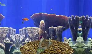 Fish Aquarium 3d Live Wallpaper Android Club4u Unlimited Downloads 2017 Tank
