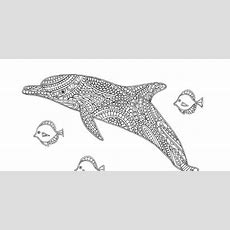 Free Dolphin Colouring Page For Adults And Kids  Crafts On Sea