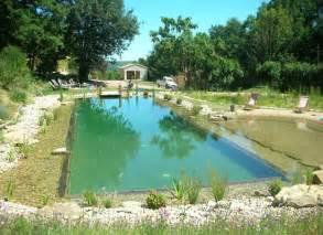 Home design natural swimming pool design for Natural pool designs