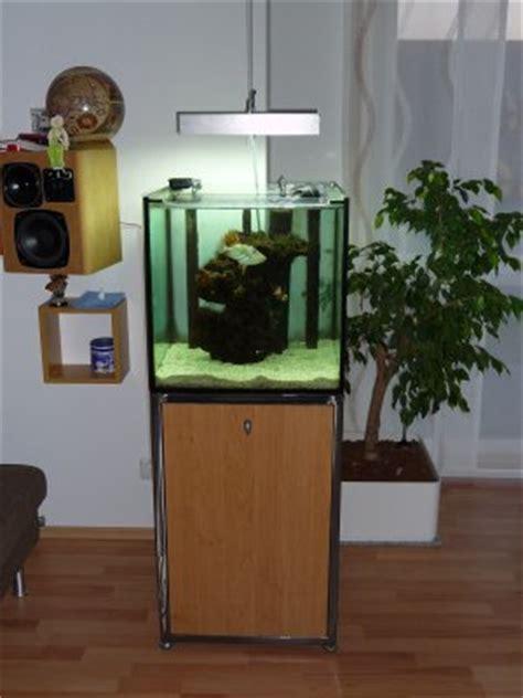 welches glas für aquarium trommlerles fische