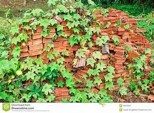 Alte Ziegelsteine Im Garten : alte ziegelsteine in einem garten stockbild bild von ~ A.2002-acura-tl-radio.info Haus und Dekorationen