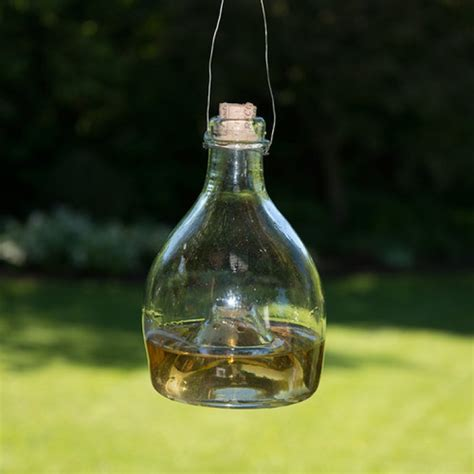 traditional glass wasp trap hand blown eco friendly