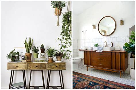 meuble pour plantes d intérieur 14 id 233 es pour d 233 corer sa maison avec des plantes vertes
