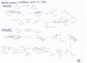 paladium ring organic chemistry ii study guides 39 s biology study