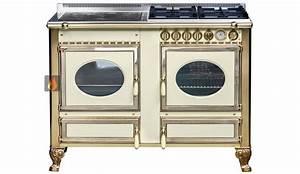 Four Et Plaque De Cuisson : piano de cuisson bois gaz et lectrique 120cm avec 1 four et une plaque de cuisson ~ Melissatoandfro.com Idées de Décoration