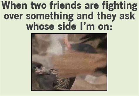 funny gif fighting jokeitupcom