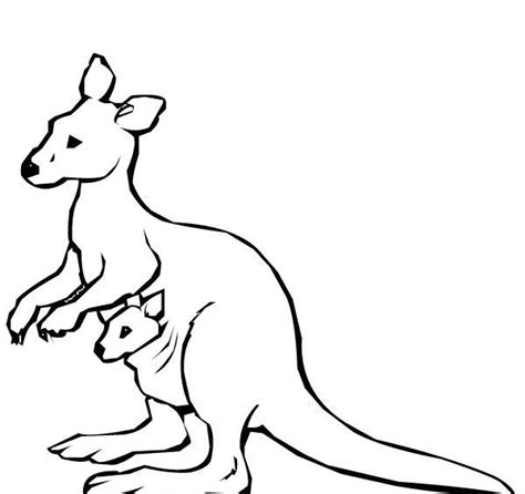 kangaroo drawing easy  getdrawings