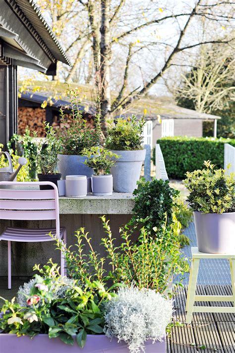 Den Balkon Mit Passenden Pflanzen Und Blumen Im September Beleben by Blumenb 252 Ro Newsroom