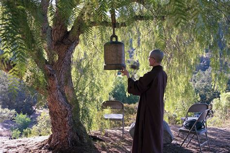 plum village nhat hanh thich nelson david tradition quotes monastery park deer buddhism america profile bell profiles interviews lionsroar books