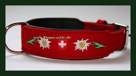 Hundehalsband Schweiz   DogsCastle