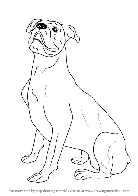 learn   draw  boxer dog farm animals step  step drawing tutorials