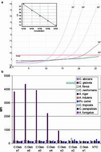 Quantitative And Multiplex Detection Of Pathogenic Fungi Using Padlock Probes  Generic Qpcr  And
