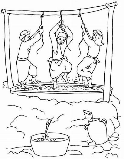 Coloring Pages Vineyard Wicked Bible Winepress Workers