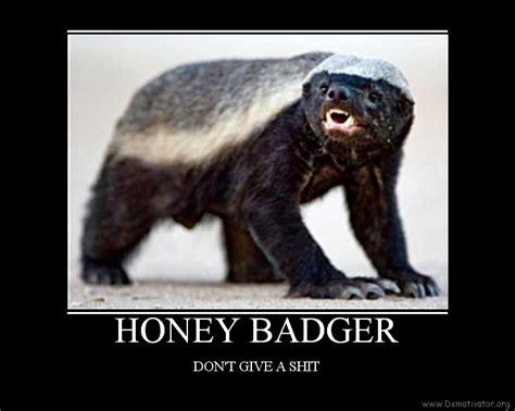 Meme Honey Badger - honey badger don 39 t give a shit