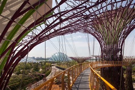bay by the garden gardens by the bay by grant associates 171 landscape architecture works landezine