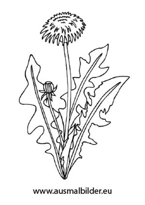 ausmalbilder sonnenblume mit blaettern blumen malvorlagen