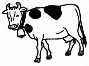 Coloriage Vache Les Beaux Dessins De Imprimer Et